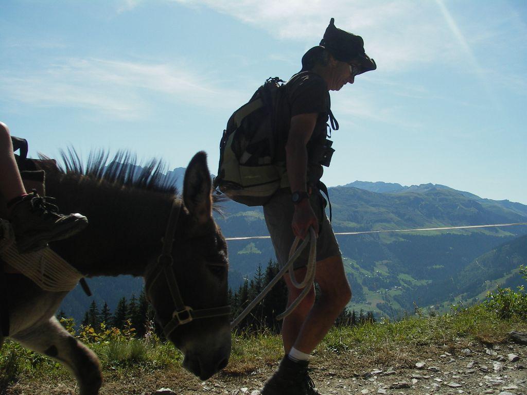 A la découverte de la montagne avec nos doux compagnons aux longues oreilles…