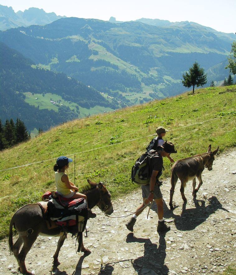 Une solution idéale pour emmener toute la famille en montagne !